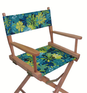 Everywhere Chair Replacement CANVAS Cover Set